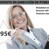 EXPERTO_DIRECCION_PYMES