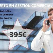 EXPERTO_GESTION_COMERCIAL_BOTON